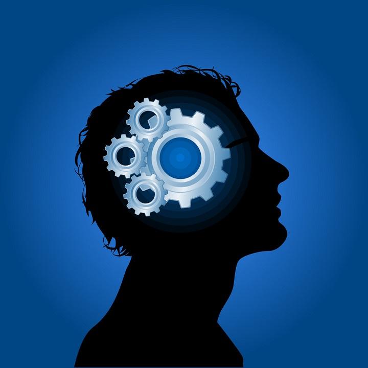 Industrial-Psychologist-mind-cogs
