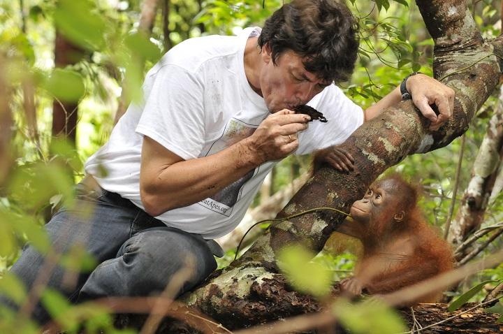 conserve-nature-primate