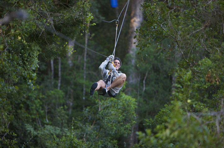 Tree-Top-Canopy-Tours-outdoor-expo