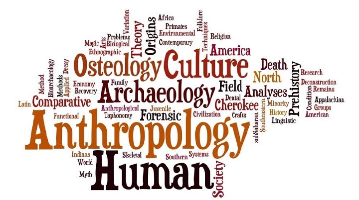 fields in anthropology jobs