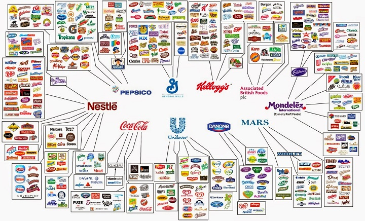 examples of brands in the fmcg industry