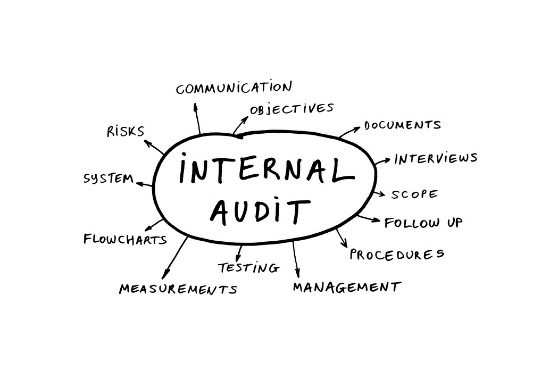 internal auditing processes
