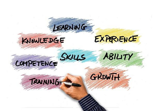 freelance, work experience, networking, internship