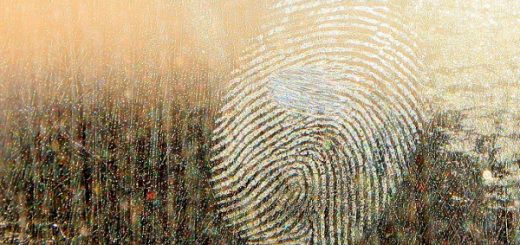 Find Forensic Scientist Jobs In South Africa | Job Mail
