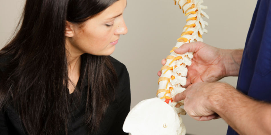 Skills Needed To Become A Chiropractor | Job Mail