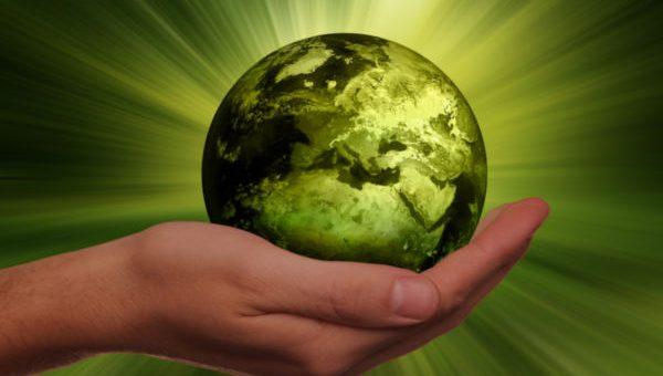 Becoming An Ecologist | Job Mail