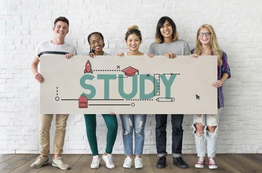 IMM, Study, Student